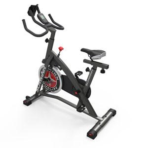 schwinn ic2 bike