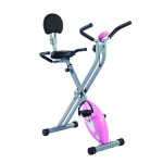 sunny health & fitness sf-rb1117 recumbent bike