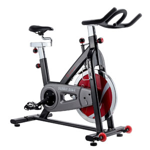 Sunny Health and Fitness SF-B1002 bike