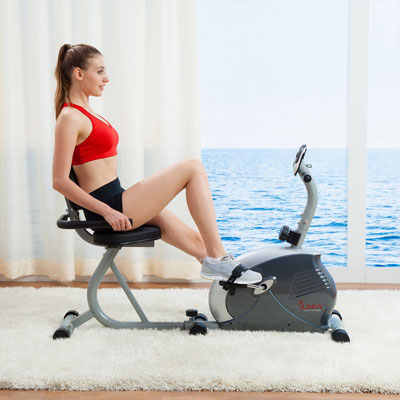 sf-rb921 sunny recumbent bike