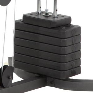 vinyl weights - weider