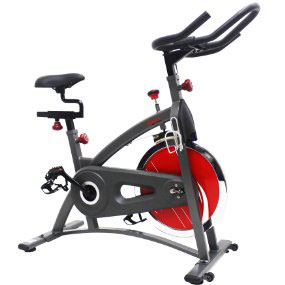 sunny health and fitness sf-b1423 - indoor cycling bike