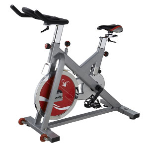 sunny health and fitness sf-b1110 bike