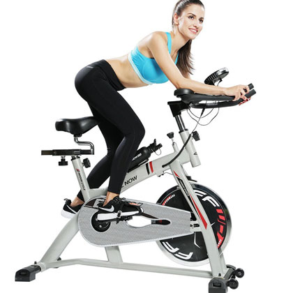 l now ld-598 - indoor cycling bike