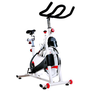 sunny health and fitness sf-b1509 - premium indoor cycle trainer