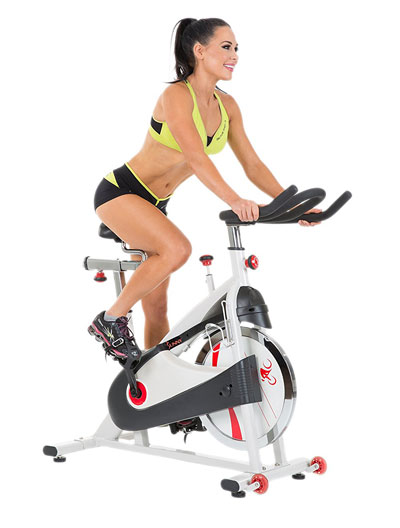 sunny health & fitness sf-b1509 - indoor cycling bike