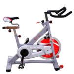 sunny health & fitness sf-b901b