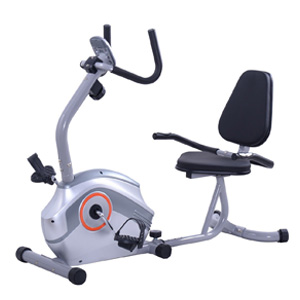 Goplus Recumbent Magnetic Exercise Bike