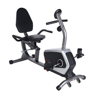 Sunny Health & Fitness SF-RB4616 Recumbent Bike