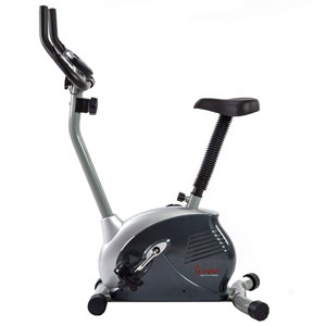 Sunny Health & Fitness SF-B910 Upright Bike