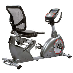 Sunny Health & Fitness SF-RB4880 Recumbent Bike