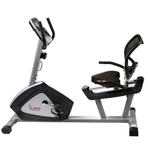 Sunny Health & Fitness SF-RB4958 Recumbent Bike