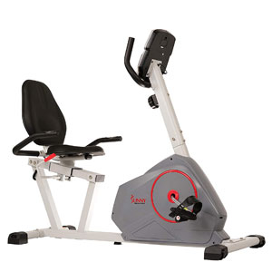 Sunny Health & Fitness SF-RB4953 Recumbent Bike