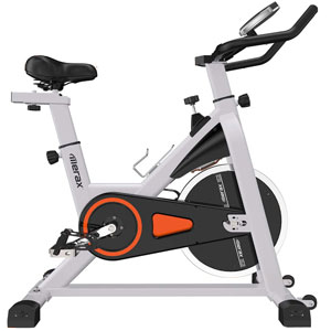 Merax Silver Indoor Cycling Bike