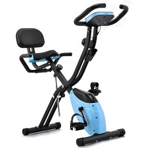 Lanos 2-in-1 Magnetic Exercise Bike
