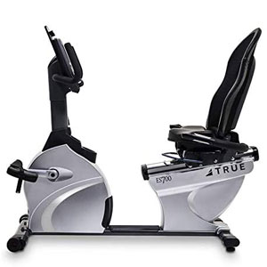 TRUE Fitness ES700 Recumbent Bike with T9 Console